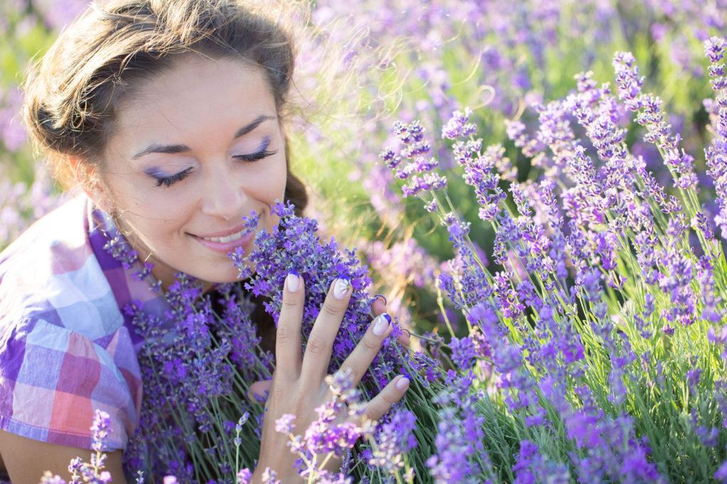 Lavandula Lamorosia™ | Aroma